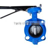 DN50-DN600 PN16/PV25/CLASS 125/CLASS250 Cast Iron through Stem water media flanged end Wafer Butterfly Valve