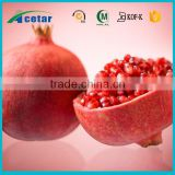 best selling products extract of dried pomegranate powder in bulk