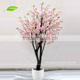 BLS028 GNW mini cherry blossom tree 5ft pink color for wedding decoration