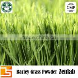 top quality barley grass organic for barley grass tablet