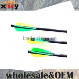 China Archery 31 Inches Steel Point Carbon Arrows for All Kinds of Hunting and Competition Bows