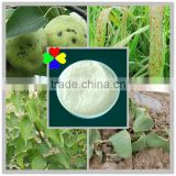CAS NO.10605-21-7 Professional agrochemical fungicide supplier carbendazim tc