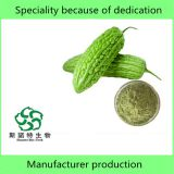 Factory Pure Natural Bitter Melon Powder