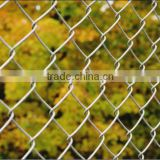 Used in Park,Ground Galvanized & PVC Coated Chain Link Fence(direct factory)