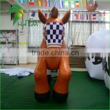 Inflatable PVC Animal / Inflatable Bouncing horse / Inflatable Horse Toy