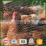 galvanized and stainless steelwire chicken cages for sale                                                                                                         Supplier's Choice