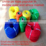 Middle East & Africa hot sales twisted pe rope