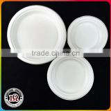 bagasse container for food disposable fast food packaging container                                                                         Quality Choice