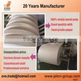 China factory 170-350gsm coated paper cup paper with competitive price