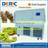 Lyophilizer Freeze Dryer with Stainless Steel and USB Port
