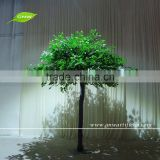 GNW BTR1603001 artificial plastic olive tree with green leaves for garden decor
