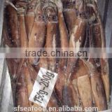 frozen seafood importers of illex squid