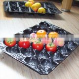 Supermarket Display Fruit Protection Nested Pack Pomegranate Plastic Packaging Tray