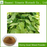Factory Supply 100% Natural Horny Goat Weed Powder 10%