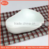 porcelain Special-shaped dish Flavour baking dish seasoning plate