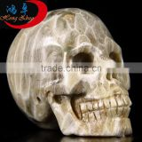 Natural mineral coral fossil skeleton skull head pieces of colored stone carving handicraft press of the hand