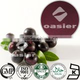 100% Natural Acai Berry Extract 4:1 10:1 Euterpe Oleracea L.