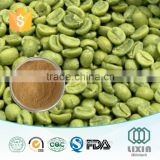Best selling healthy product weight loss product Natural green coffee bean extract herbal organic extract 50% Chlorogenic Acids