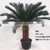 Indoor artificial sago cycas tree for dinosaur world