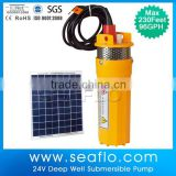 SEAFLO Submersible Solar Pump 6LPM SFBP2-G96-08                                                                         Quality Choice