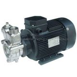 Induction Motor Model DT40Ba