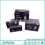 EverExceed 12V rechargeable lead acid battery with AGM separator AM12-20