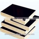 marine plywood for concrete formwork/container plywood/phenolic resin                                                                         Quality Choice