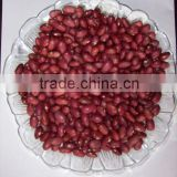 2015 new crop red kidney beans supplier in china