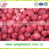 Export bulk Hot sale frozen IQF fresh strawberry