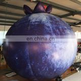 Giant inflatable blueberry,inflatable fruit for advertising