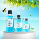 Refreshing Mint MouthWash Liquid Mouthwash Antiseptic Mouthwash