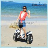 Xinli Escooter High Quality OEM best adult Two Wheel 1000w electric scooter evo designed by US engineer
