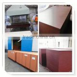 Trade Assurance HOT!! mould plywood for construction, Concrete Formwork,Marine Plywood(PROFESSIONAL MANUFACTURER)