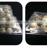 Plastic quail tray quail egg packaging quail egg cartons for sale