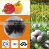 soluble potassium humate fertilizer,agriculture humic acid fulvic acid fertilizer powder