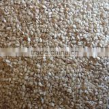 99.90% Indian Sortex Hulled Sesame Seed For Vietnam