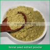 fennel seed extract powder