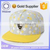 2015 New Products Custom Metal Plate Snapback Hat In Snapback Caps