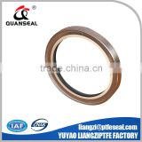 good price spring energized PTFE lips seal