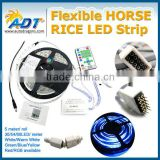 5M 5050 RGB SMD 270LEDs Flexible horse rice led Strip with 24 Keys IR Remote Controller PSU
