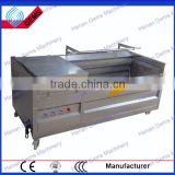hot sale industrial radish washing machine