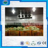 Cheaper Supreme Quality cold storage/cold room for onion                                                                         Quality Choice