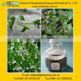 Eyebright Extract/Euphrasia officinalis from GMP Manufacturer