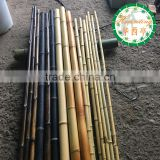 bamboo poles with different size / white poles / green poles/ purple poles