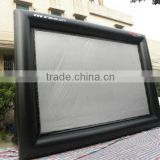 big cinema screen price