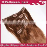 Alibaba china supplier brown color virgin brazilian remy clip-in hair double drawn clip-in extensions