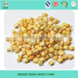 Chinese wholesale frozen baby corn