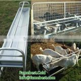 Feeder Panels for Sheep and Goats Farm feeder fence