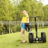 remote control golf cart with two wheels,electric golf cart controller ,2 wheel golf cart self balancing