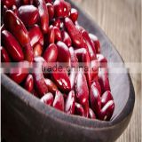 chinese small red kidney beans